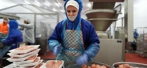 Türkiye'nin tek köfte fabrikası Bu fabrikadaki kadınlar her gün 100 ton köfte hazırlıyor