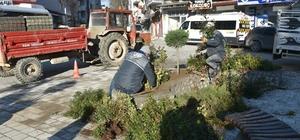 Atatürk Meydanı çiçek bahçesine dönüştü Zabıta denetimleri sürüyor