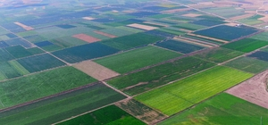 'TARSİM' kapsamında çiftçiye 13,5 milyon TL devlet desteği