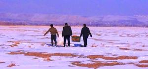 Erciş Belediyesi, yaban hayvanları için doğaya yem bıraktı