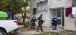 Adana'da sivrisinekle mücadeleye şimdiden başlandı