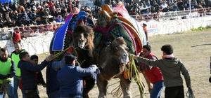 Yatağan'da deve güreşi Bu yıl 20'ncisi düzenlenen Yatağan deve güreşlerine çevre il ve ilçelerden binlerce vatandaş izledi.
