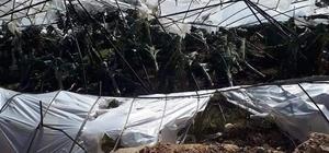 Bozyazı'da fırtına muz seralarına zarar verdi