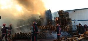 Sakarya'da palet fabrikasında yangın: 2 kişi dumandan etkilendi