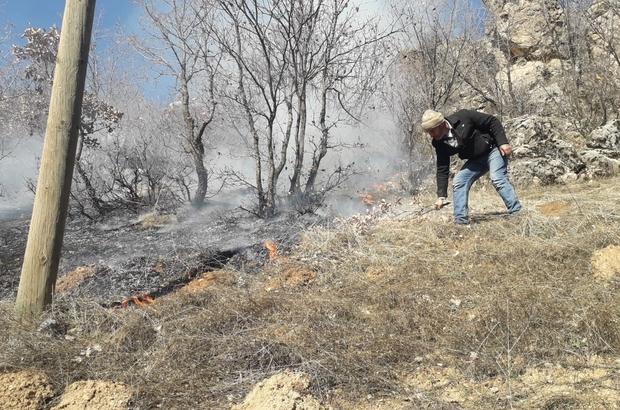 Ağaçlık alandaki yangına vatandaşlar müdahale etti