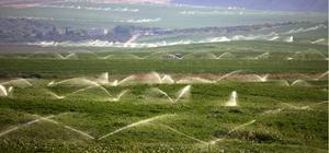 Toprak verimli kullanılacak ekonomiye katkı sunulacak Şanlıurfa'da 2019 yılında 3 milyon dekar arazi sulandı