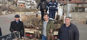 Büyükşehir'den İbradı'da çiftçilere fide desteği