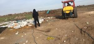 Viranşehir Belediyesi'nden ilaçlama çalışması