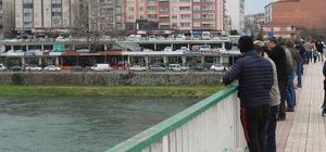 Yeşilırmak'ta rastgele Amatör balıkçılar köprüye akın etti
