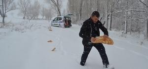 Bünyan Belediyesi yaban hayvanlarına yem bıraktı