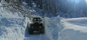 Trabzon'da kar temizleme çalışmaları sürüyor