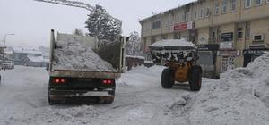 Varto Belediyesi kar nakline başladı Belediye ekipleri kamyonlarla günde 600 ton kar nakli yapıyor