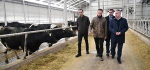 Şahin, tarım ve hayvancılık sektörünün öncü firmalarını ziyaret etti