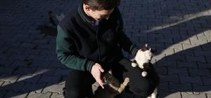 Ordu'da her okula bir hayvan sahiplendiriliyor