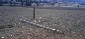 Hisarcık'ta kablo hırsızları köyü telefon ve internetsiz bıraktı