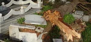 Fırtına nedeniyle 15 mezar tahrip oldu Mezarlıktaki ağaçların devrilmesi sonucu mezarlar zarar gördü