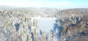 Çamlıpınar göleti buz tuttu