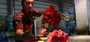 """Çiçekçiler korsanlardan dertli Mersin'de çiçekçiler, 14 Şubat Sevgililer Günü için son hazırlıklarını yapıyor Kentteki mezatlarda yoğunluk yaşanırken, sektör temsilcileri 'korsan çiçekçiler' konusunda yetkilileri göreve çağırdı Mersin Çiçekçiler Esnaf ve Sanatkarla Odası Başkanı Ömer Şahbudak: """"Çiçeği çiçekçiden alın, seyyardan değil"""""""