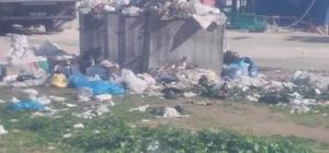Erdek'te çöpler toplanmıyor, sokaklar kokmaya başladı Mahallesi sakinlerinin belediyeye çöp isyanı