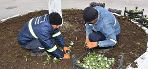 Ürettikleri çiçeklerle Ceyhan'ı süslüyorlar