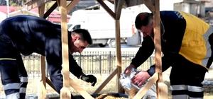 Kastamonu'da sokak hayvanlarına yiyecek desteği
