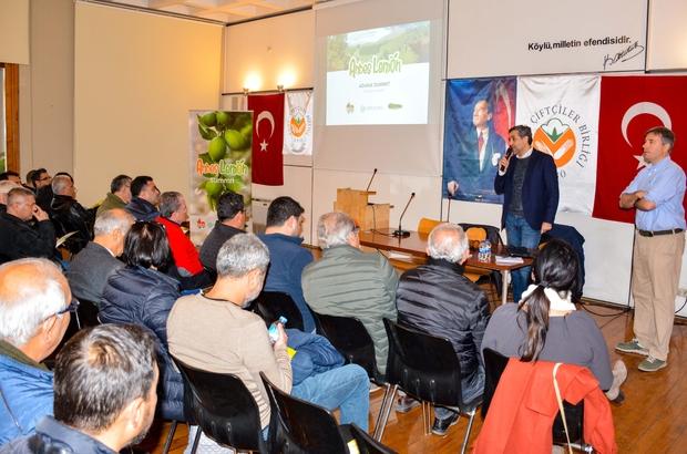 """Limonda yüksek verimli çeşit Adana'da çiftçilere """"Andes"""" türü limon çeşidi tanıtıldı"""