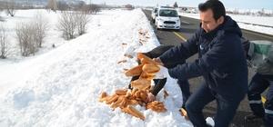 Bünyan Belediyesi sokak ve yaban hayvanlarını unutmuyor