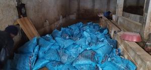 Büyükşehir zabıta, 22 ton kaçak kömür ele geçirdi Menşesiz katı yakıt tacirlerine geçit yok