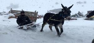 Çocukların eşekli kızak keyfi Sivas'ın Zara ilçesinde traktörün ve eşeğin arkasına bağlanan kızaklarla karda kayan çocuklar karın tadını çıkarttı.