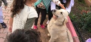 Minikler öldürülmekle tehdit edilen köpeği sahiplendi