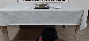 Narkotik köpeği Perma uyuşturucuyu yakaladı