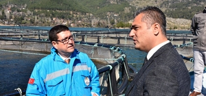Muğla'nın alabalık üretimi 21 bin tona çıktı