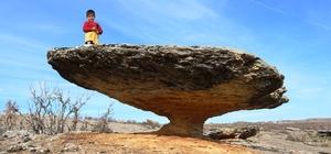 Asırlık mantar kaya görenleri hayrete düşürüyor