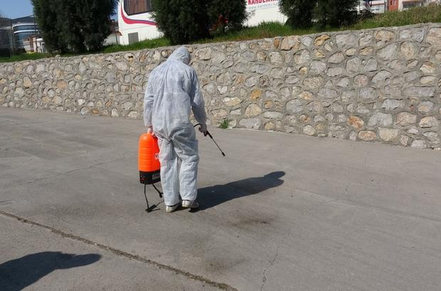 Karabük'te çekirge istilası korkuttu Karabük'te ortaya çıkan binlerce çekirge belediye tarafından ilaçlanarak temizlendi