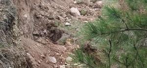 Bolu'da, ormanlık alanda heyelan meydana geldi