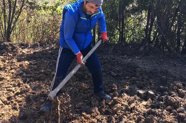 Milli boks antrenörü 24 gündür kendi karantinasında Boks antrenörü bahçe kazarak spor yapıyor