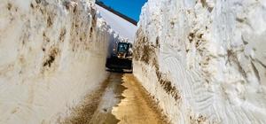 Ordu'da 2 bin rakımlı yaylada kar mücadelesi Doğu değil Karadeniz