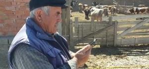 Kaymakamlığın yardım hattını aradı, söyledikleri görevlileri şaşırttı Amasya'da hayvancılıkla ailesinin geçimini sağlayan 75 yaşındaki Hakkı Kambur, ineğini satarak Milli Dayanışma Kampanyası'na bağış yaptı