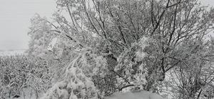 Ordu'da Nisan ayı ortasında kar yağışı