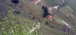 Giresun'da bir köy daha karantinaya alındı