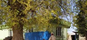 Polateli ilçesinde 236 kişiye bin TL ödeme yapıldı
