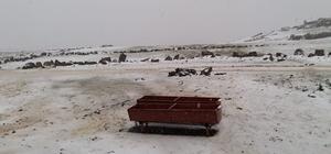 Tuzluca'da yüksek kesimler beyaza büründü