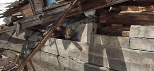 Rize'de çığ 1 evi yıktı Köyde 27 yıl önce meydana gelen çığ olayında 4 kişi hayatını kaybetmişti
