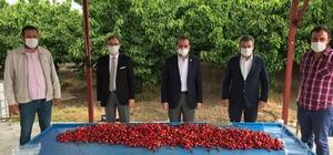 Bakan Pakdemirli, Kuzey Yarım Küre'nin ilk kiraz hasadına katıldı Bakan Pakdemirli, Kemalpaşa'daki ilk kiraz hasadına konferansla katıldı