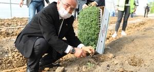 """Ordu'da sözleşmeli tarım başlıyor Ordu Büyükşehir Belediye Başkanı Mehmet Hilmi Güler: """"Üreticilerimizin ürünlerini sözleşmeli tarım modeli kapsamında alacağız"""""""