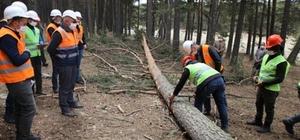 Orman sahasında eğitim çalışması