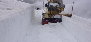 Ordu yaylalarında kar mücadelesi