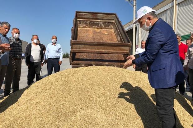 Mardin'de Dünya Çiftçiler Gününde sezonun ilk arpa hasadı yapıldı