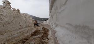 Trabzon'da karla kaplı yayla yolları açılıyor Büyükşehir Belediyesi ekipleri 18 yayla yolunda karla mücadele çalışması yürütüyor