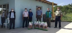 Şaphane'de üreticilere tohum desteği devam ediyor